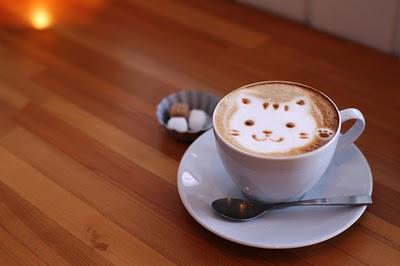 El café alarga la vida de los gatos